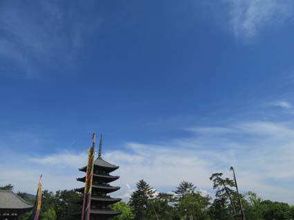 興福寺-21(20190503).jpg