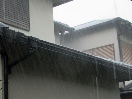 雷雨-1(20190911).jpg